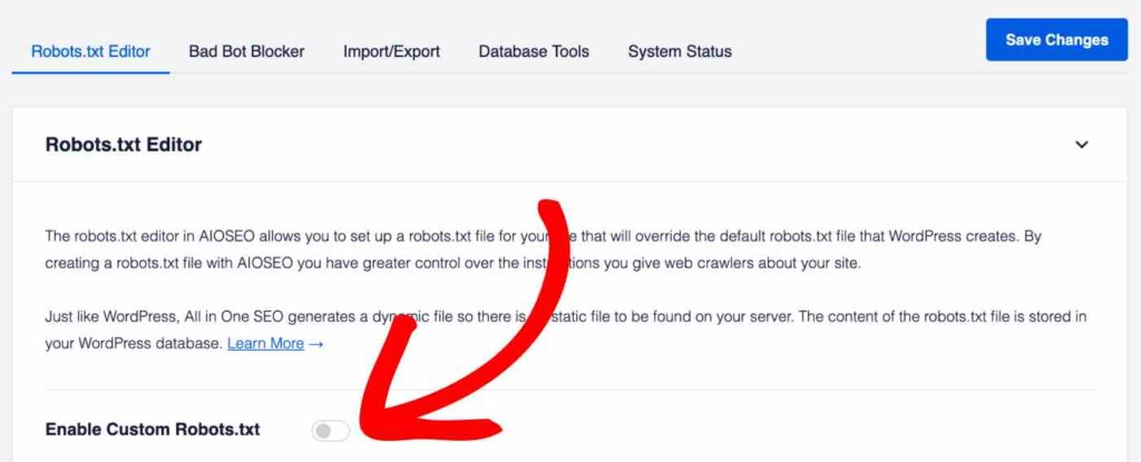 enable-custom-robots.txt-setting-in-all-in-one-seo